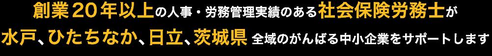 創業20年以上の人事・労務管理実績のある社会保険労務士が 水戸、ひたちなか、日立、茨城県全域のがんばる中小企業をサポートします